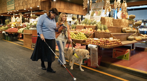 Blind shopper with guide dog.